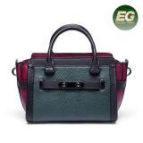 Le borse classiche di vendita calde delle signore dei sacchetti di cuoio in linea comerciano dai fornitori Emg5225 della Cina