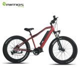 48V 1000W Bafang MITTLERER Laufwerk-ultra Systems-Farbbildschirm-elektrisches Fahrrad mit fettem Gummireifen