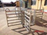 Panneau de chemin de traite de voie des moutons 3 et de moutons de bétail