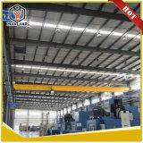 2 톤 단 하나 대들보 천장 기중기 (HD02T)