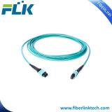 Cordon de connexion de faisceaux du câble Om3 Om4 12 de joncteur réseau de la fibre optique MTP/MPO