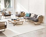 Insieme esterno del sofà del patio della mobilia del giardino della mobilia tessuto corda di Walden 2018