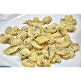 As conservas de legumes em conserva Champignons OEM