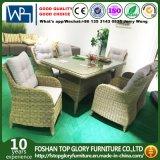 Muebles de mimbre al aire libre del hotel de los conjuntos de los muebles de las sillas del vector y de la rota que cenan el conjunto (TG-HL28-1)