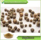 Nutgall/Chino Gall/Gallnut/Galla Chinensis extracto en polvo