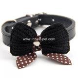 Élément de Pet Fashion petit chat Collier pour chien, chat produit