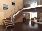 Escalera de cristal de acero al aire libre con la pisada de acero de Stairccase del diamante