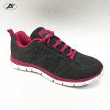 حذاء رياضة [سبورتس] بناء أحذية [كسول شو] لأنّ نساء