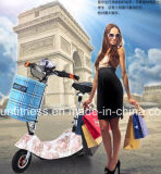 24V 250W, das elektrischen Roller für Erwachsenen faltet