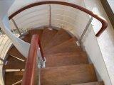 Лестница Conbined с столбом нержавеющей стали и поручнем твердой древесины