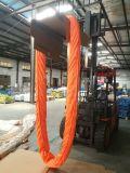 Bride sans fin ronde Wll de polyester lourd 100 GS de la CE de tonne