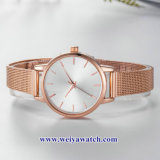 La sangle en alliage de maillage Mesdames montres quartz wist, Lady Watch (WY-17035C)