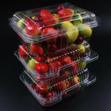 Пластичным автоматическим загерметизированная вакуумом коробка еды свежая