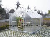 정원 (SW812)를 위한 취미 온실