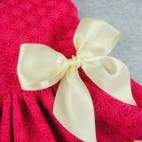 La bande douce rouge de lacet de robe de crabot d'animal familier vêtx des chemises