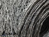 Sailin Quente-Mergulhou a rede de fio galvanizada da galinha