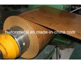 Bobines en bois d'acier du modèle PPGI/PPGL