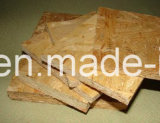 OSB (Oriented Stand Board) Ligne de Production