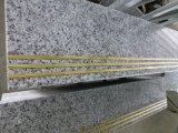 G439安い灰色の花こう岩階段磨かれたステップ