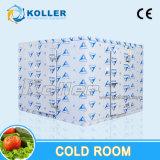 Chambre froide de grande capacité de stockage de glace