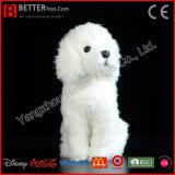 살아있는 것 같은 견면 벨벳 개 연약한 백색 푸들 현실적 박제 동물 장난감