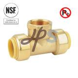 NSFの無鉛真鍮押しの適当なFnpt Wallplateの肘のカップリング