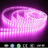 Striscia di SMD5060 60LED 14.4W 12V/24V RGB LED