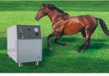 Função elevada & concentrador de alta pressão do oxigênio (JAY10/15)