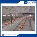 Il pollame Metal la tettoia da vendere