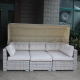 Neue Hotel Deisgn Patio-Garten-Möbel-lebendes Sofa stellte mit Verein-Stuhl ein