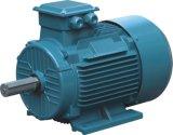 수도 펌프 Ie1를 위한 삼상 감응작용 전기 모터