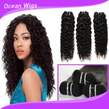 Vaisseau en cuticule vierge Raw Curly Wave Brazilian Hair Machine Weft