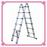 共同梯子のTVで見られる二重はめ込み梯子の/Ultimateの梯子