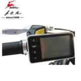 """batteria di litio 26 """" 36V Ebike con il certificato del CE (JSL-038G)"""