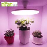 O bulbo do diodo emissor de luz da C.A. cresce claro para a planta decorativa