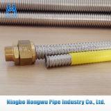 Blankes Gas Csst Dn20 1 Zoll-gewölbter flexible Schlauch