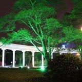 Luces laser de la Navidad al aire libre/laser impermeable del verde de la luz laser del jardín