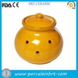 La nouveauté de l'ail polonais Vintage Pot décoratif