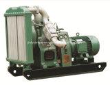 Luftkühlung-beweglicher schraubenartiger Luftverdichter