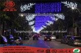 Свет украшения праздника улицы СИД напольный