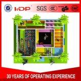 Дружественность к окружающей среде детский крытый детская площадка джунглей тренажерный зал мягкой Play для продажи