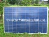 다결정 태양 전지판 (BX-220P)