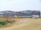 Edificios Pre-Dirigidos de la estructura de acero (SSW-14341)