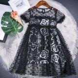 Nuovi vestiti del vestito dalla ragazza del merletto di modo di disegno