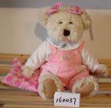 곰 (160037)