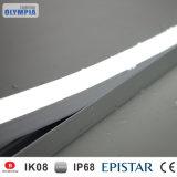 LED de alimentación de protección IP68 Resistente al agua piscina DMX tira de la luz de neón