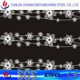 1.4404 En acier inoxydable laminés à froid feuille à feuille de métal inoxydable en 2b Surface