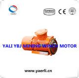 鉱山のウィンチのための耐圧防爆三相非同期モーター