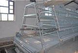 Un équipement de type automatique de la volaille cages en batterie pour le poulet de relevage