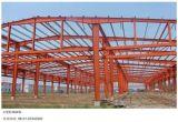 5000-200000m2 Grand Span moderne Prefab construction